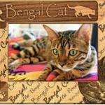 Press Release: GiftWorksPlus Offers Custom Frames for Pet Lovers